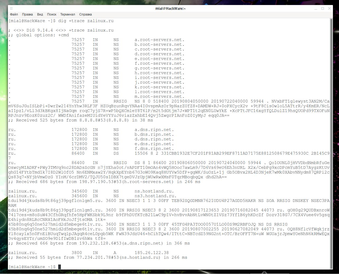 Как пользоваться командой dig для DNS запросов - ZaLinux ru